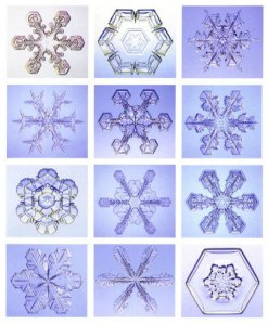 The Unique Snowflake of Your Soul